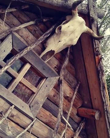 Баба Яга из Лесного Уголка on Instagram Летала тут над соседним царством вот музыку надыбала🤗🎶🎶🎶 ~~~~~~~~~~~ ~~~~~~~~ бабаяга фурманов лесн