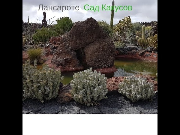 Лансароте Сад Кактусов