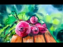 How to Paint Red Beets and Garden in Watercolors