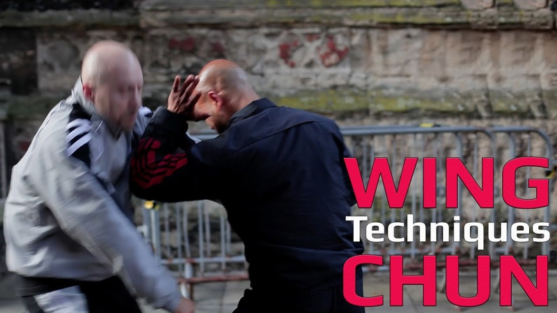 Wing Chun techniques wing chun kung fu - Palm strike and elbow