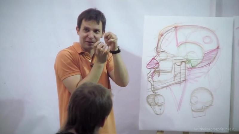 Анатомия головы. Александр Рыжкин