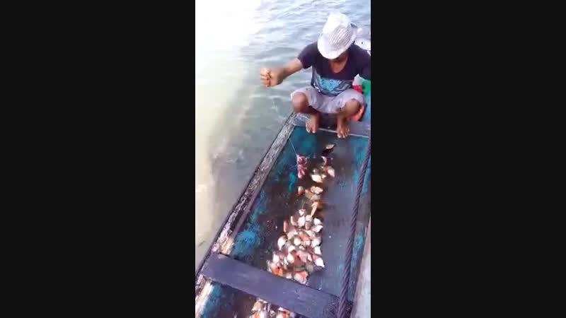 Опасная рыбалка 🎣 😳😳😳