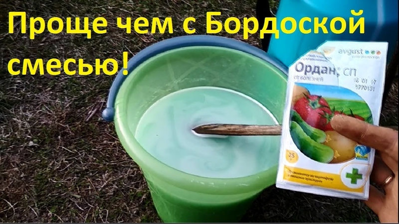 Обработка клубники от болезней, защита от пятнистости, грибковых заболеваний весной, осенью.