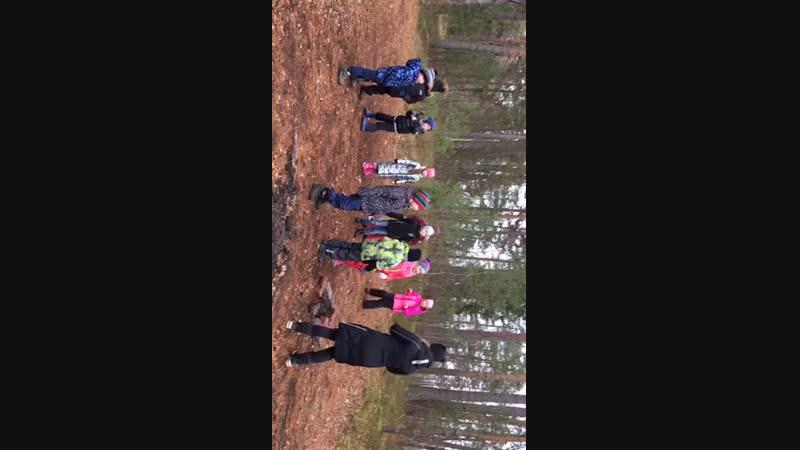 А вы давно танцевали в лесу? А мы это делаем каждый раз на Пикнике