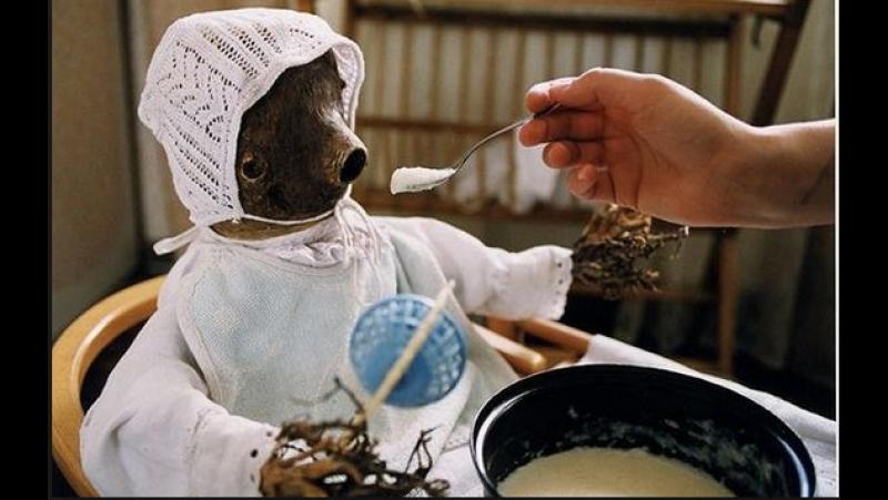18 Полено Ян Шванкмайер Арт хаус сюрреализм драма 2000 Чехия Великобритания Япония DVD9 КИНО ФИЛЬМ LIVE
