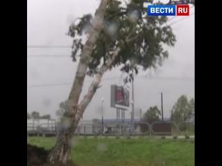 В Южно-Сахалинске порывы ветра достигают 28 метров в секунду