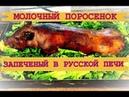 Готовим молочного поросенка в русской печи