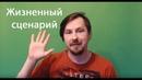 Узнай свой жизненный сценарий! Психология с Алексеем Виноградовым