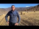 Водитель YouTour - Быков Дмитрий