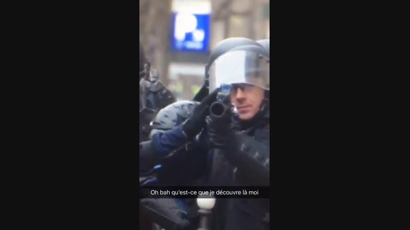 ON VOIT CLAIREMENT DES FLASH D'INTELLIGENCE COMME DANS LE REGARD D'UN DOS GRIS
