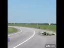 Просто парашютист переходит дорогу