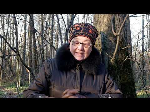 Родноверы о наследии Парфирия Иванова