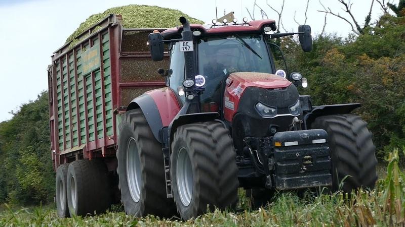 Case IH 300 Optum Working Hard in The Field During Corn Harvest | Häckseln 2018 | DK Agri
