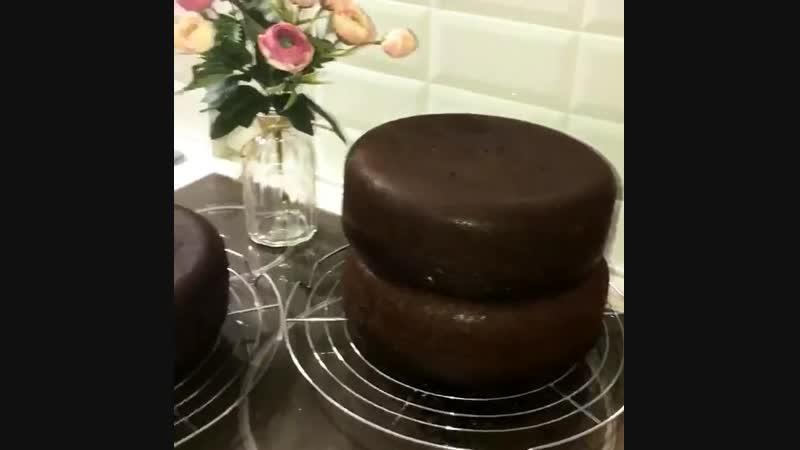 Шоколадный бисквит | Больше рецептов в группе Десертомания