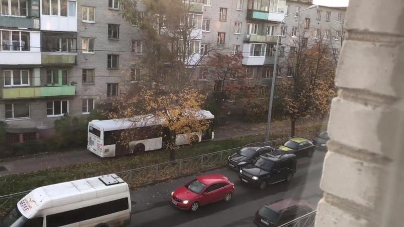 Автобус едет по тротуару в Ломоносове