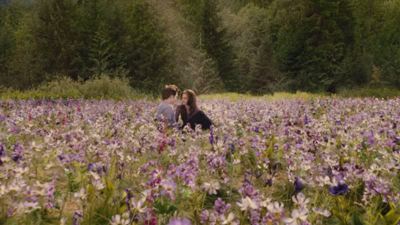 Финальная сцена саги The Twilight Saga Breaking Dawn Part 2