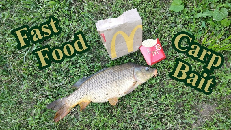 Fast Food Carp Bait catches BIG Fish