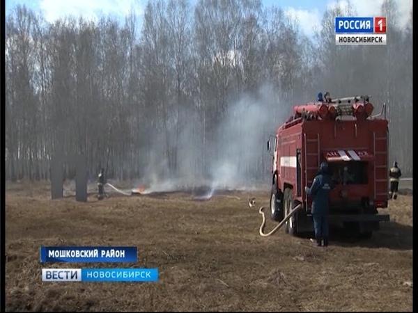 В нескольких районах Новосибирской области ввели режим ЧС в связи с пожароопасной обстановкой