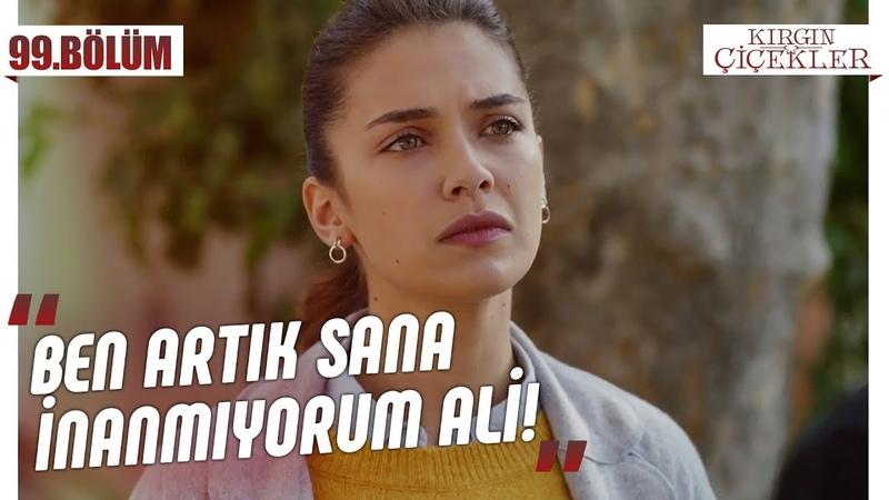 Eylül Ali'yi affedecek mi Kırgın Çiçekler 99 Bölüm