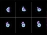 Uranus Giant Impacts: 3 Earth Mass Impactors