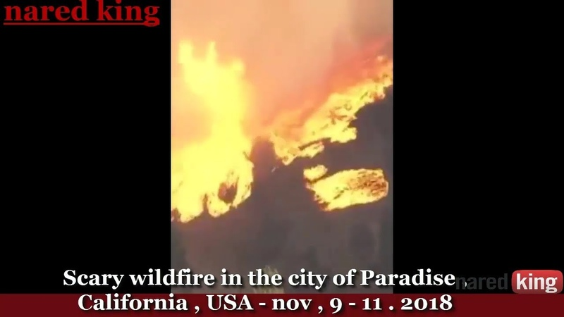 What is happening in our earth November 2018 / p2 flood, wildfire что происходит на нашей земле
