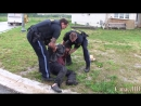 OPP enforce law in Caledonia