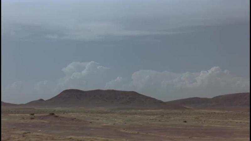 Песня воробьёв 2008 آواز گنجشکها