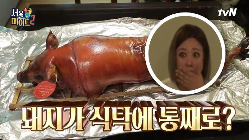 Seoulmate2 돼지 한 마리가 식탁에 통째로 올라오는 쌍둥이네 스케일_ 190218 EP.11