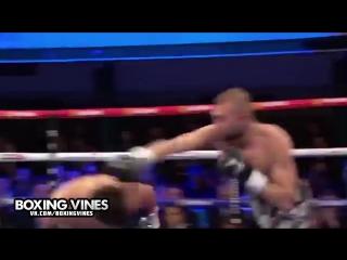 BOXING_VINES ( by Alik ) (Boxing Vines) l