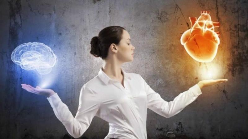 Как найти баланс между умом и сердцем? балансжизни