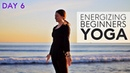 Morning Yoga For Beginners (Energizing) 15 Minute Flow - Day 6 | Fightmaster Yoga Videos
