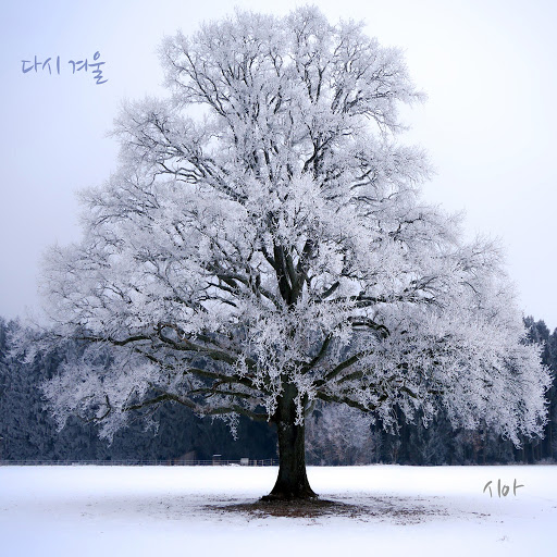 Sia альбом Winter Again