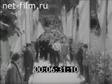 Киножурнал Наш край 1976 № 39