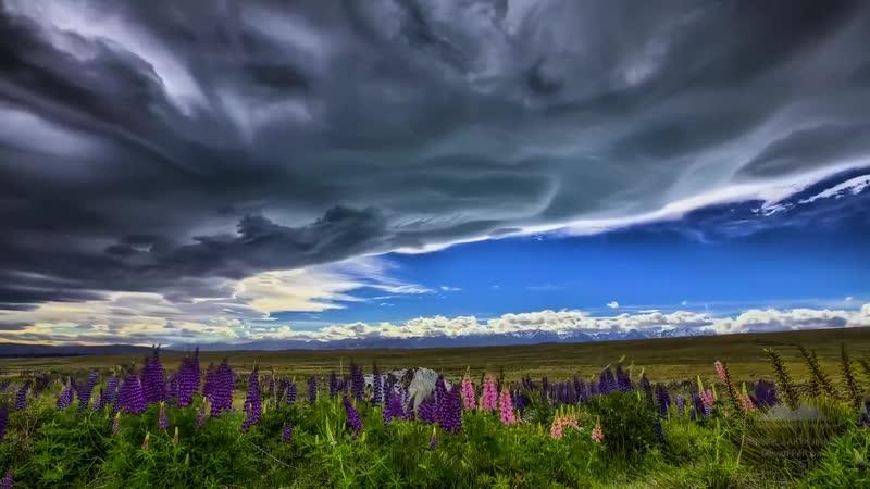 Самое красивое видео. Новая Зеландия - красота природы в 4К. The most beautiful video . New Zealand - the beauty of nature in 4K
