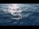 Море, Греция. На пути к городу Линдос