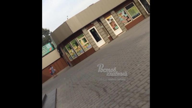 Дикий рев на пр Сельмаш 23.9.2018 Ростов-на-Дону Главный