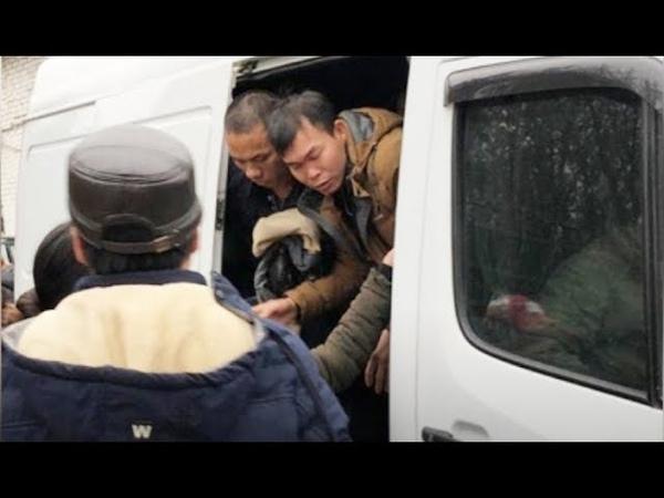 Вьетнамцы разделывали и жрали собак, которых держали в теплицах в Подмосковье (2018)