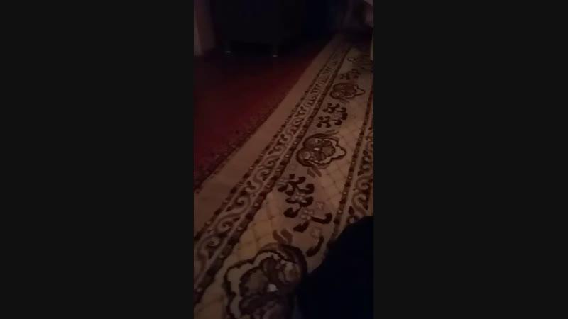 Наурызбек Шакен - Live