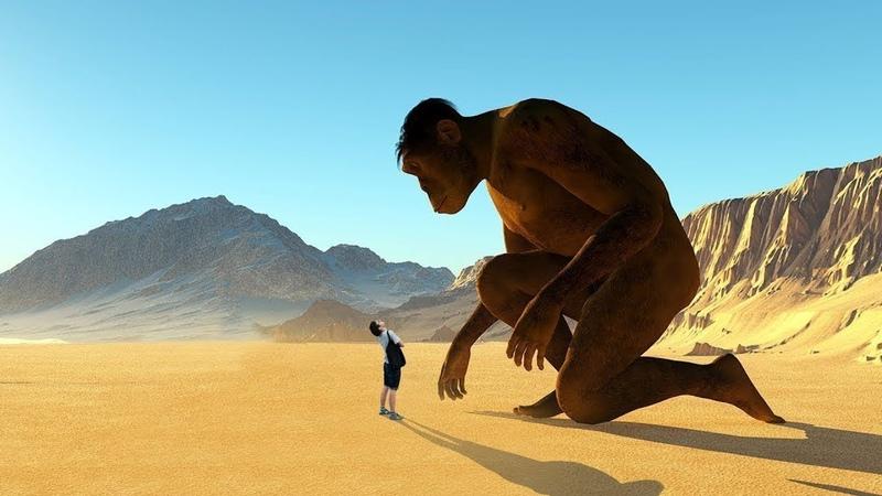 Wer lebte vor 100 000 Jahren auf der Erde