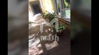Учащиеся колледжа в Керчи рассказали о взрыве и стрельбе - Видео - L!fe