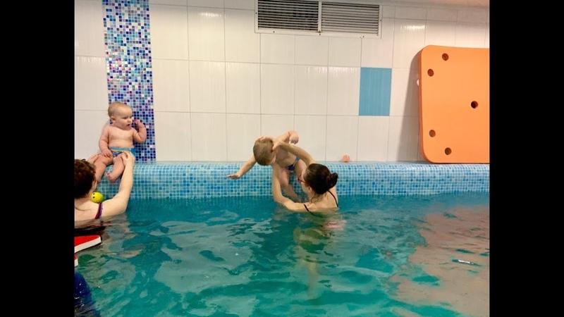 Ныряем с бортика в бассейн Обучение плаванию в бассейне в Минске для детей Курсы Секция занятия