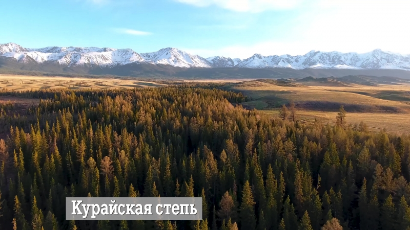 Джип путешествие майский Алтай Монголия Altai Mongolia 4K