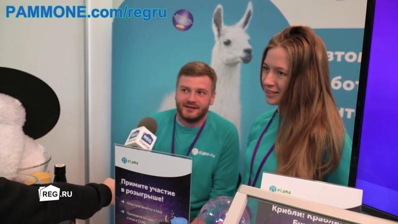 Reg.ru хостинг на Российском Интернет Форуме 2019 года