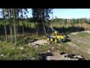 Ecolog forest harvester and Ponsse forwarder