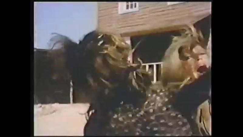 Bobby Rydell Wild One