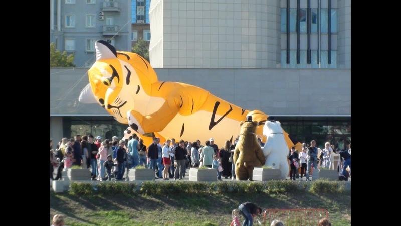 День Тигра во Владивостоке 30.9.18 (4) Дмитриев Дмитрий