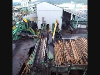Incredible aerial journey shows logs being turned to lumber at sawmill