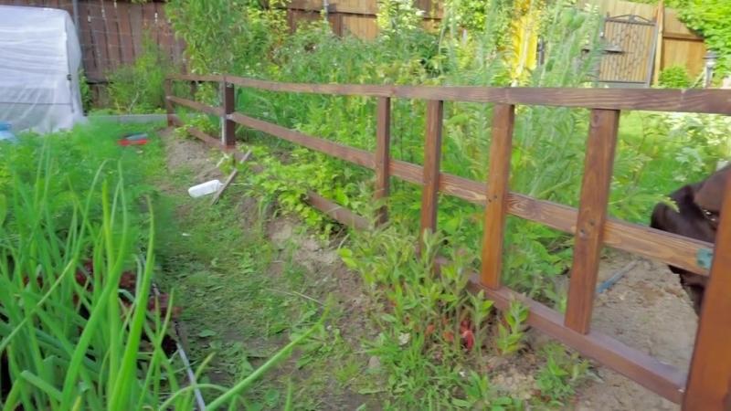 Огородный забор своими руками Ограждение от собаки