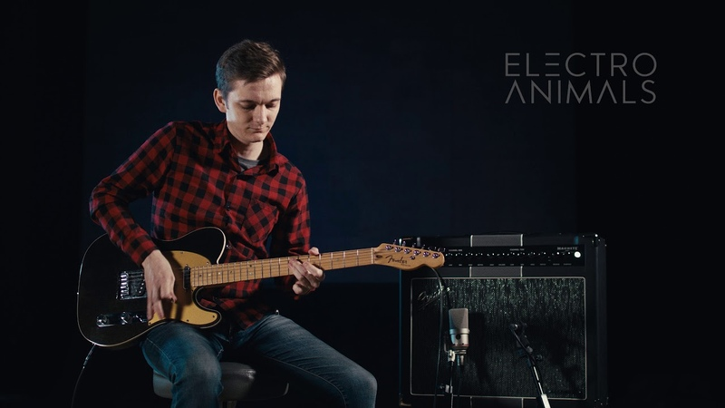 Electro Animals Clean Telecaster Set Pickups