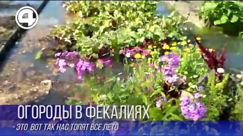 Топит огрод фекалиями Среднеуральск